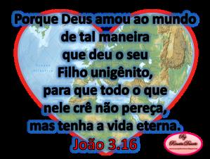 João 3.16